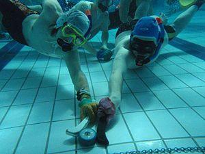 הוקי מתחת למים, או: דחוף את התמנון